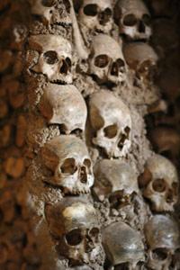 schedels-dichtbij