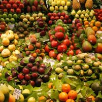 40-fruit