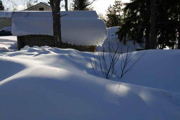 12-sneeuw