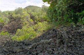 34-lavalandschap