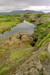 41-landschap