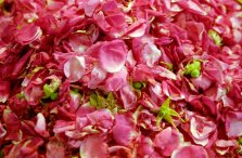 21-rozenblaadjes