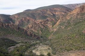 1160-landschap