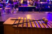 11-slaginstrument