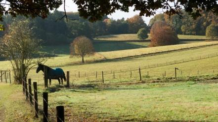 18-landschap