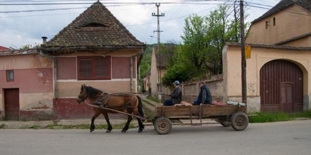 511-paardenwagen