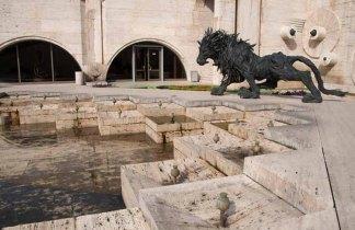 15 leeuw