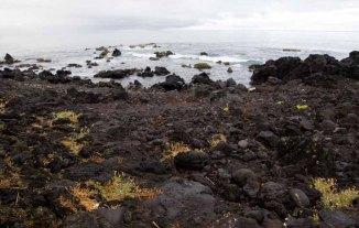139 lavalandschap