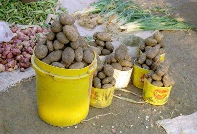 305 aardappels