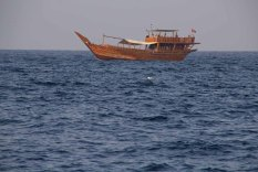 171 dhow