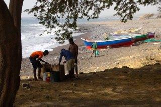 169 vissers