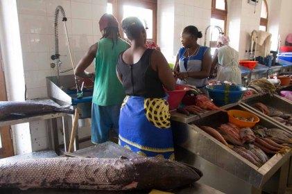 33 vismarkt