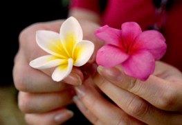 106 bloemen