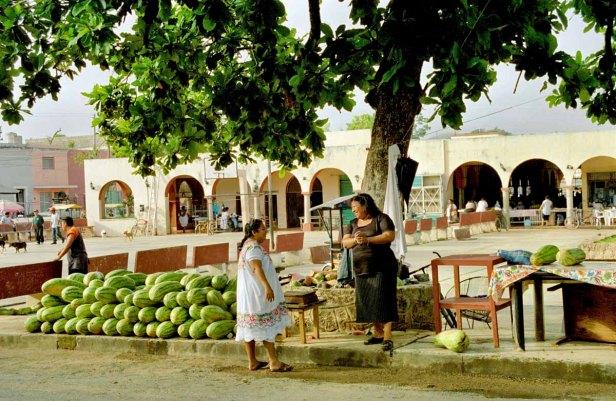 15 meloenenverkoopster