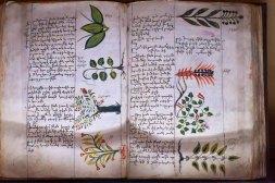 319 plantenboek