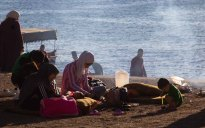 463 strandgangers