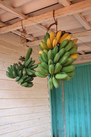 140 bananen