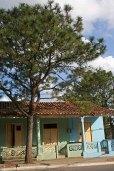 186 boom voor huizen